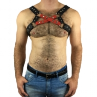 HARNESS X FRONTAL